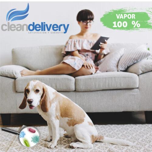 lavado de tapetes-cleandelivery